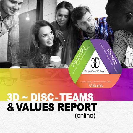 DISC + Teams + Values