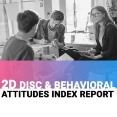 The 2D Report: DISC + Behavioral Attitudes Index (BAI) (online)