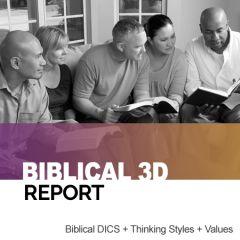 The Biblical 3D Report: DISC + TEAMS + Values (online)
