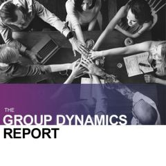 Group Dynamics Report (online)