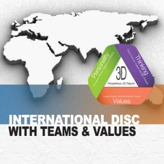 International DISC, TEAMS & Values (Online)