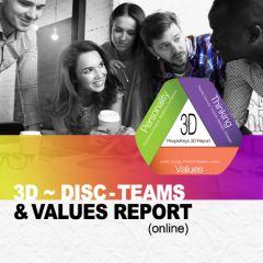 The 3D Report: DISC + TEAMS + Values (online)