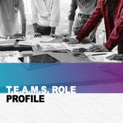 The TEAMS Role Report