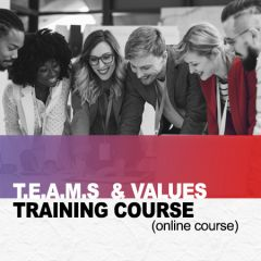TEAMS and Values Course (online)