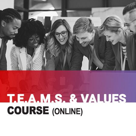 T.E.A.M.S. and Values training course
