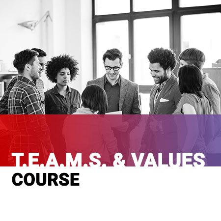 Teams and Values Course